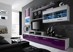 Paris Contemporary Design Wall Unit/Modern Entertainment Cen